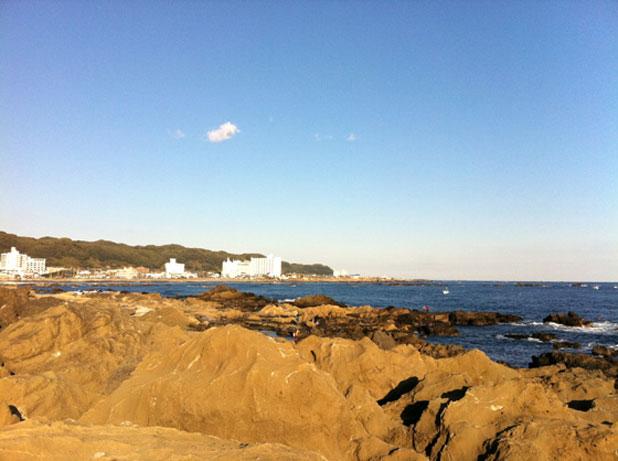 野島崎の眺望